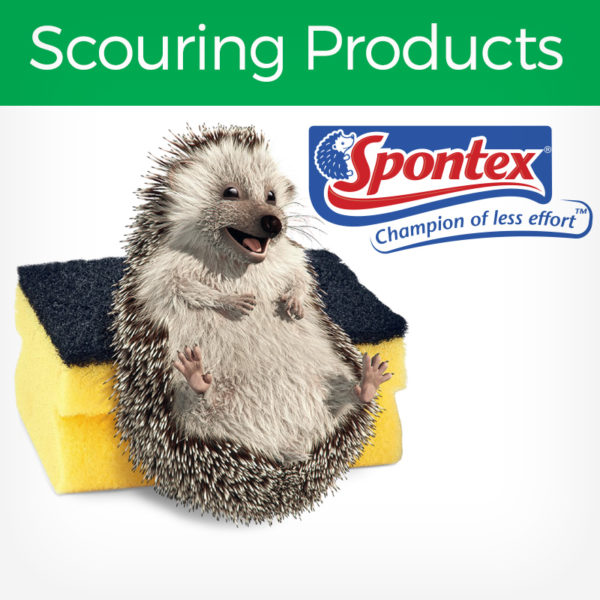 Spontex Scouring Products