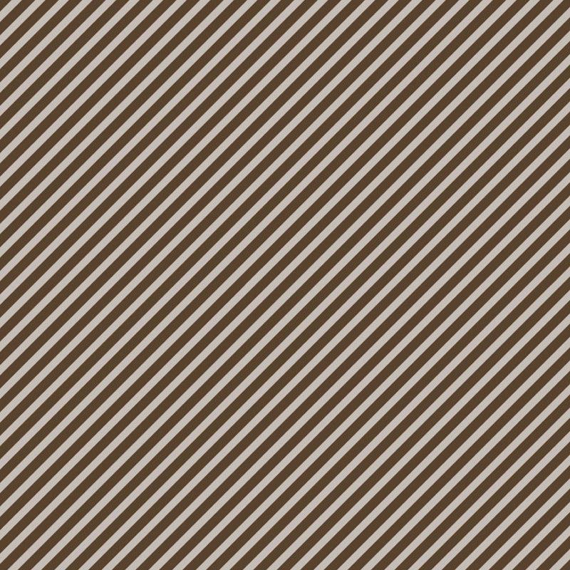Siena Cocoa